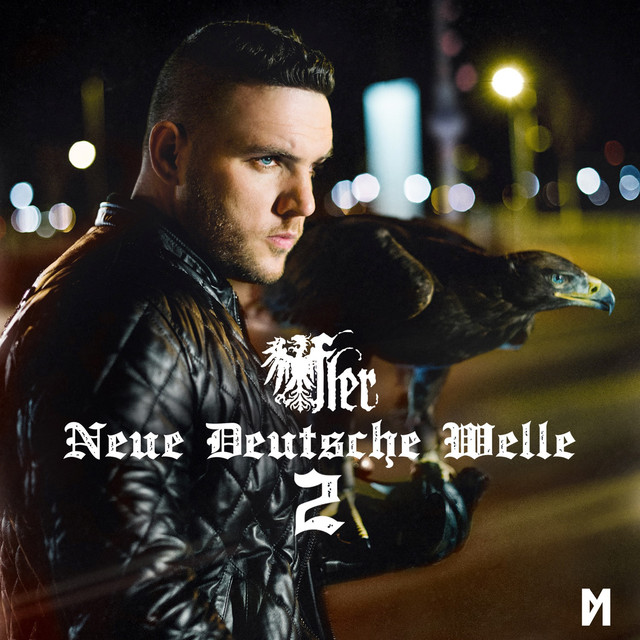 fler unterwegs lyrics